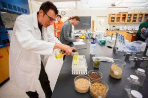 Обзор специализированного оборудования для зерновых лабораторий: модели и цены  (цены от завода)
