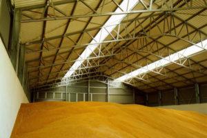 Как быстро обнаружить заражение зерна и обработать место хранения  (цены от завода)